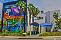 Palm Trees and artistic mural on side of Museum of Science and History